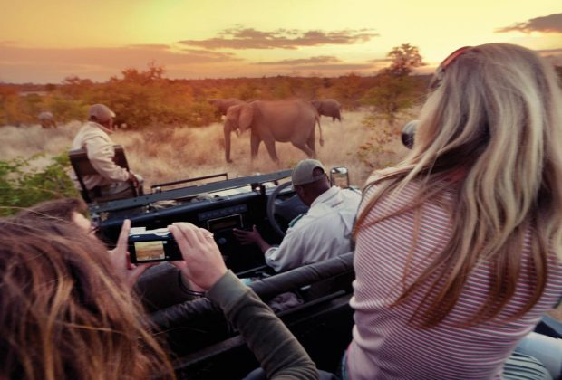 itinerary_lg_south-africa-kruger-travellers-vehicle-elephants-sunset-jaymie-bachiu-2012-img5792-processed-edit-lg-rgb-web