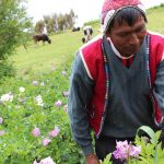 itinerary_lg_traditional-andean-experience